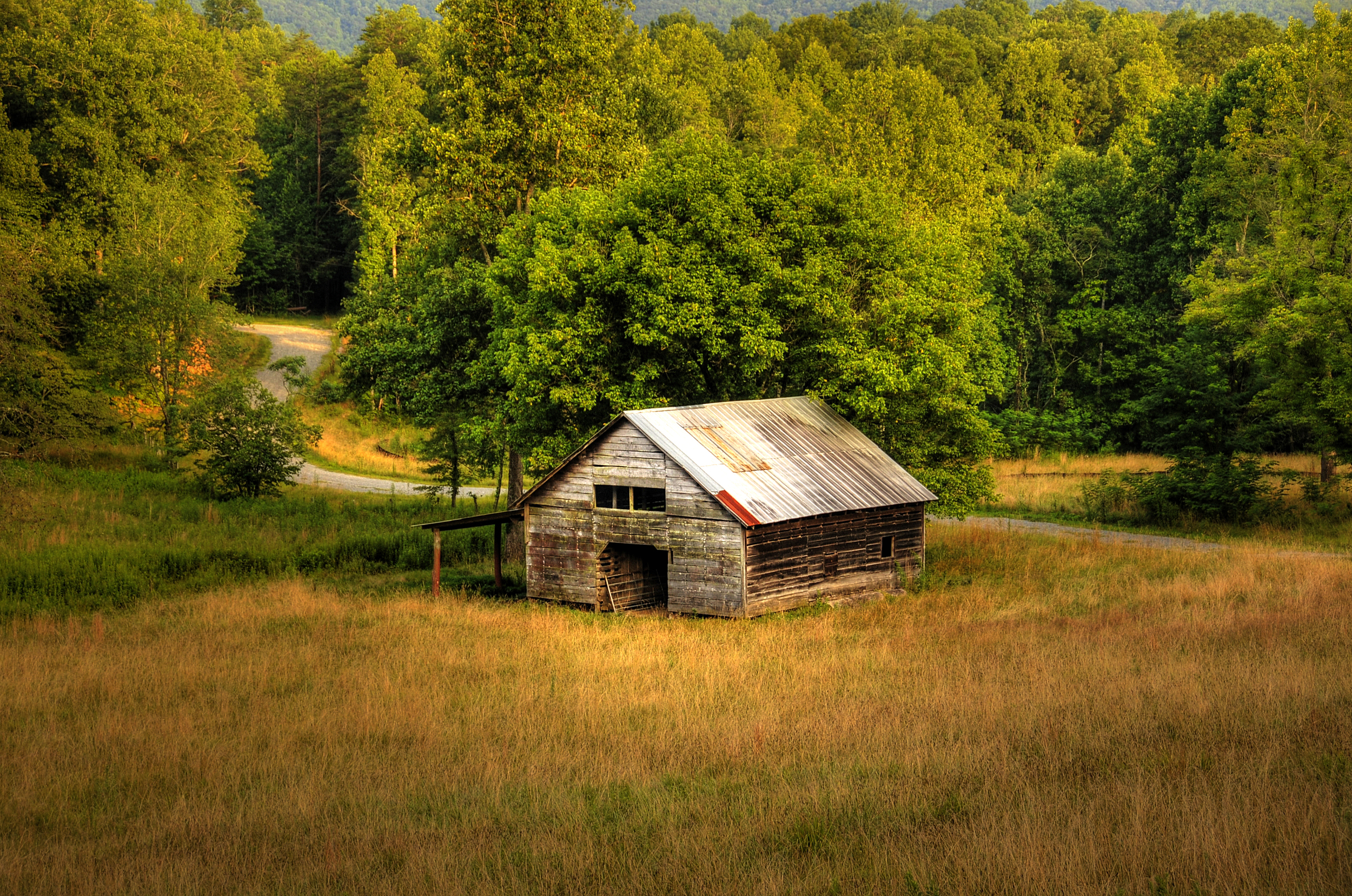 Forest view barn5.jpg