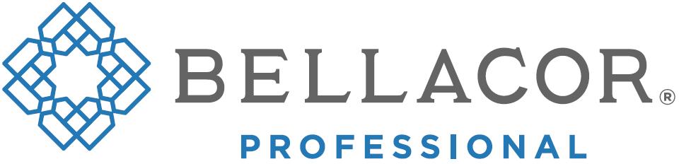Bellacor - Graphic design client of Danielle Alexander Design in Minneapolis, MN