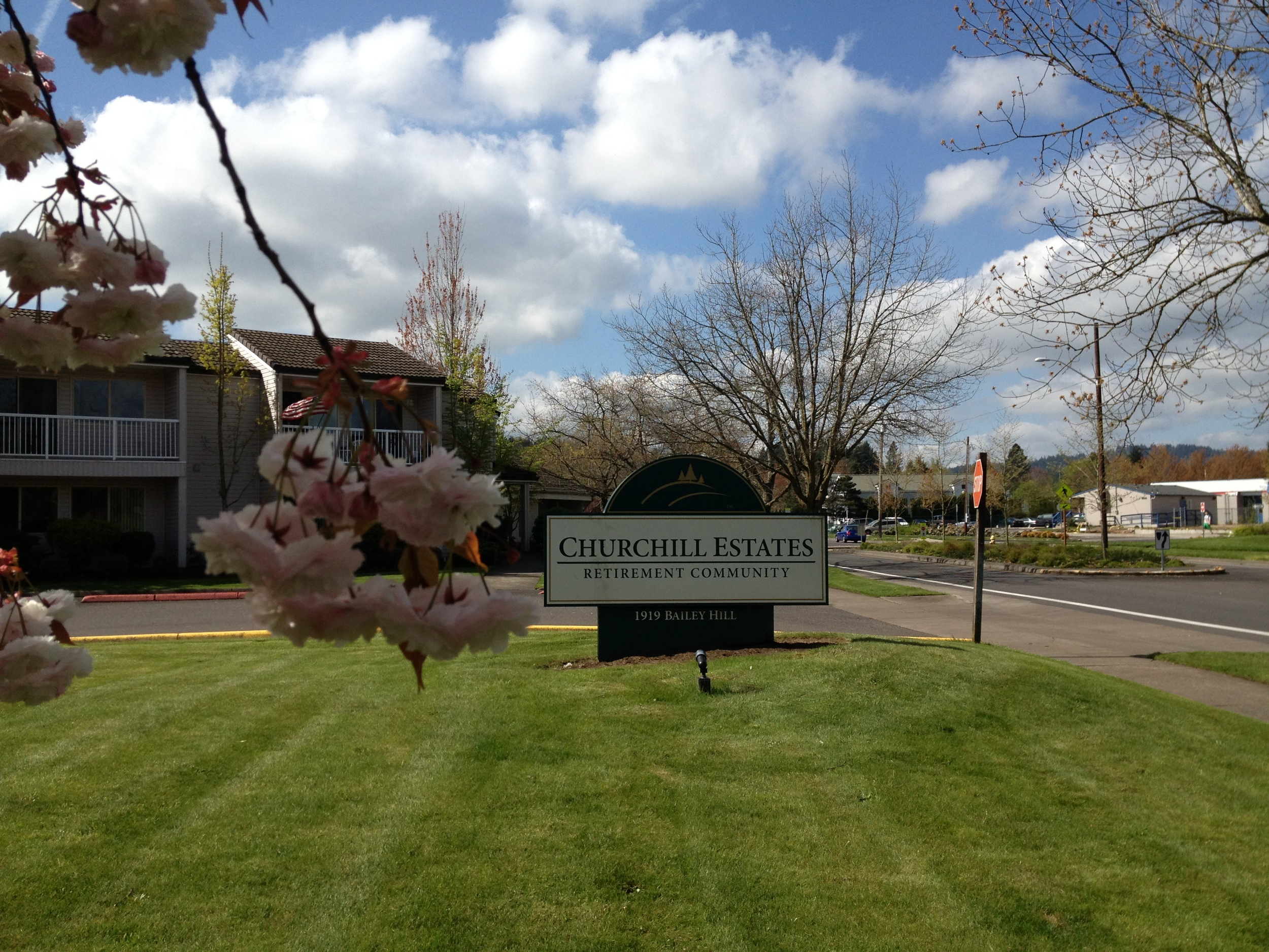 Springtime in Eugene Oregon