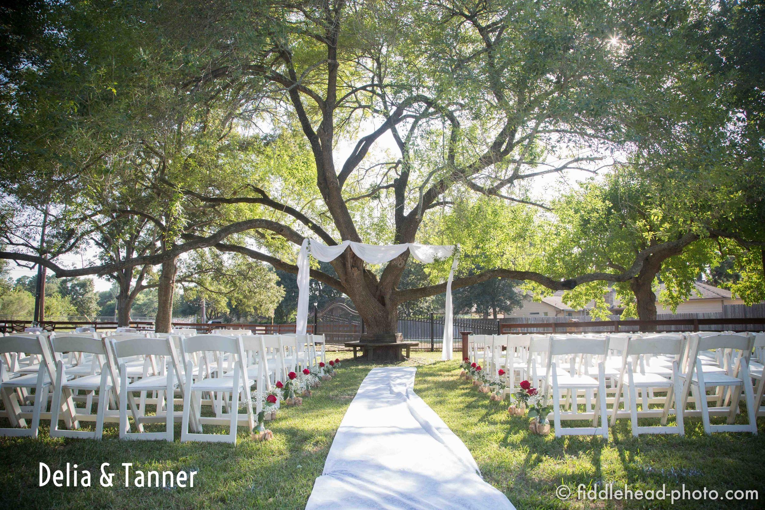 DELIA WEDDING-1.jpg