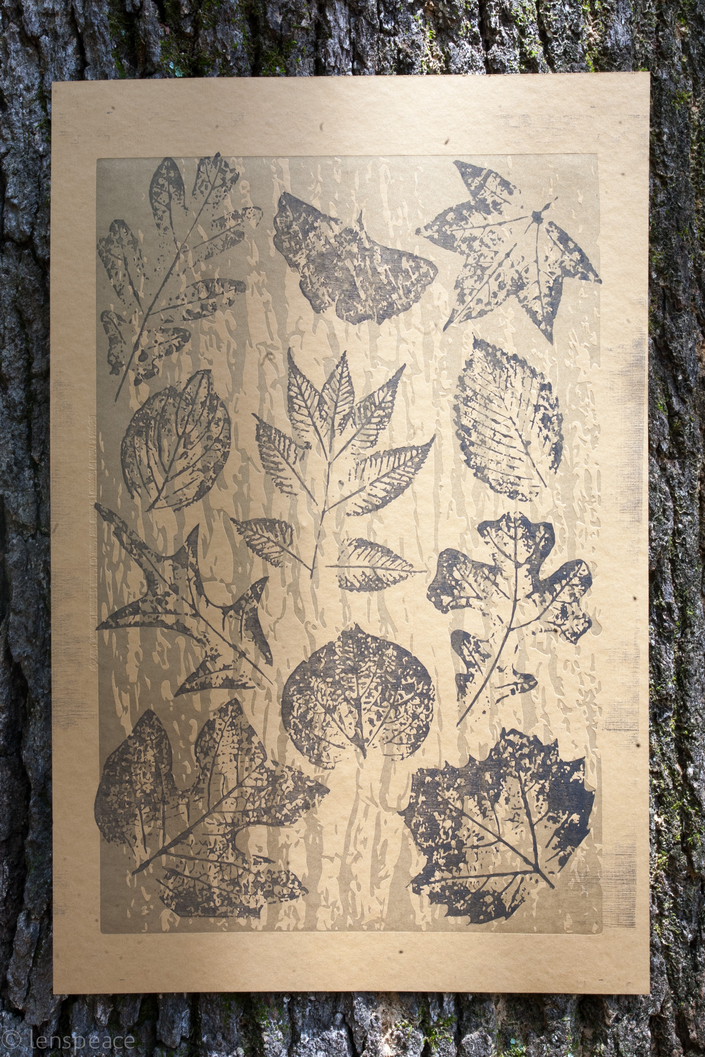 We'll also be raffling off a limited-edition letterpress designed by  lenspeace  for the  A Year In Giving  social innovation poster project. The particular poster was created with printed impressions of real leaves from our own native canopy and its sales benefit Trees Atlanta.