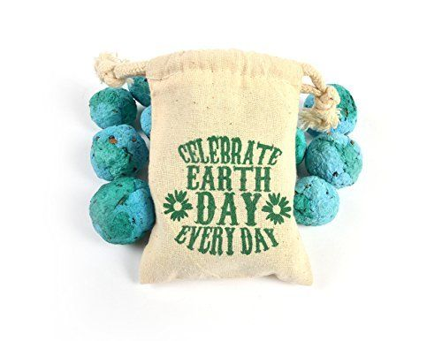 Bloomin Earth Day Wildflower Seed Bombs