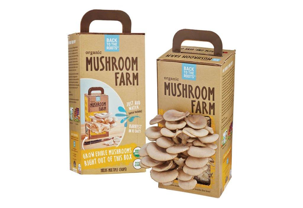 Back to the Roots Organic (Oyster) Mushroom Mini Farm