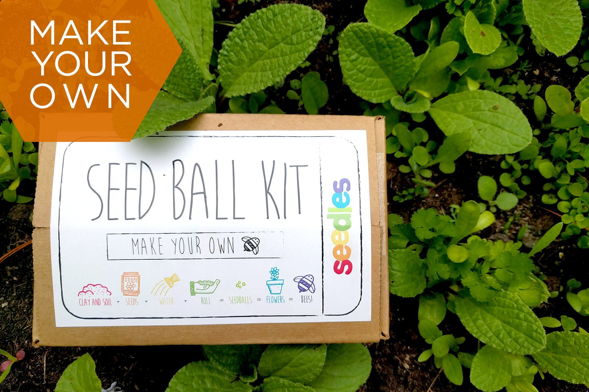 DIY Wildflower Seed Ball Kit - Southeast