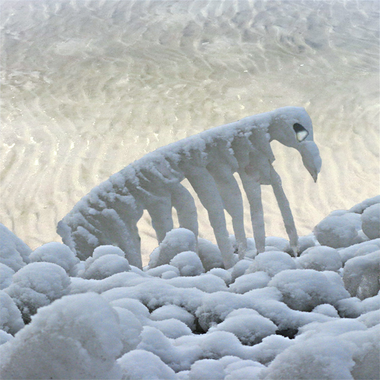 IJSSCULPTUREN - ICE SCULPTURES