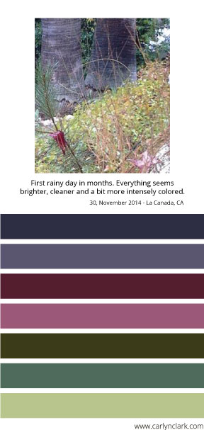 Carlyn Clark's color palette in honor of the first rain in months