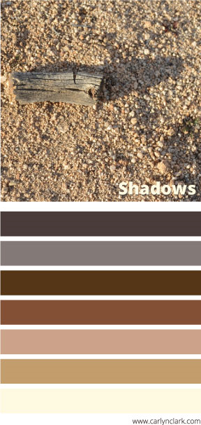 carlyn-clark-shadows-color-palette