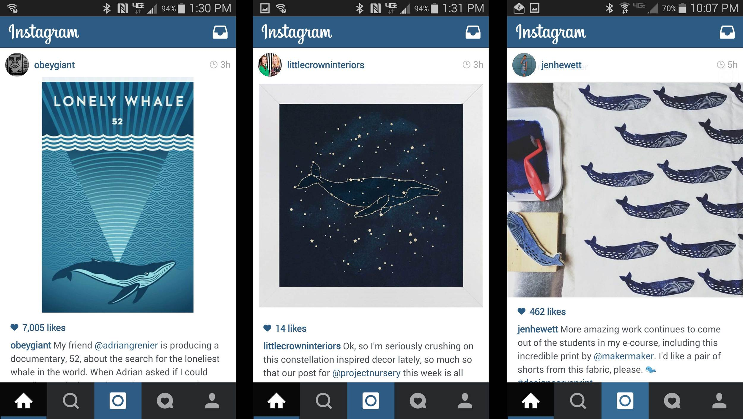 Screenshot of my instagram page where whales popped up 3 times in a few hours.