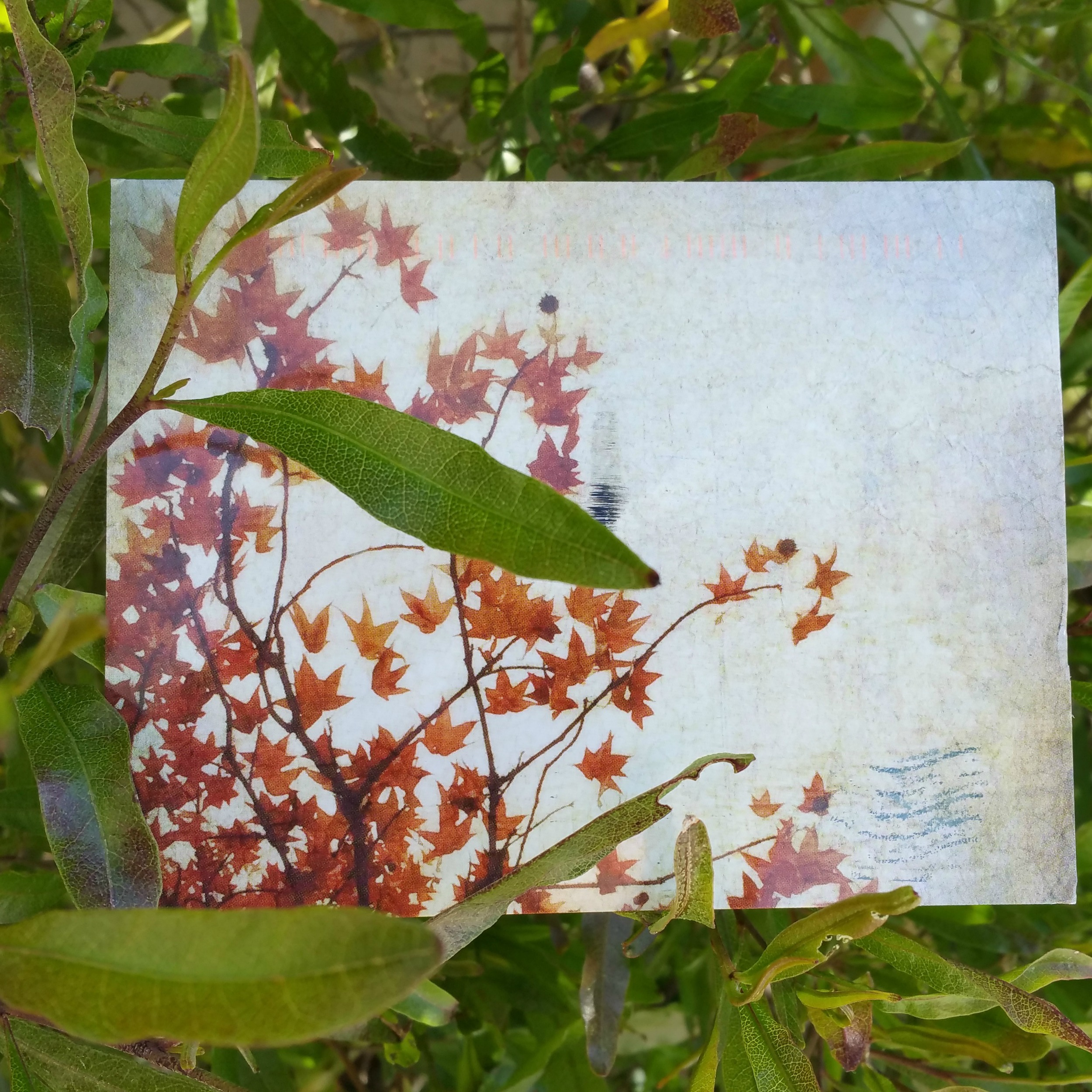 2015 Liberate Your Art Swap card received from  Kat Sloma