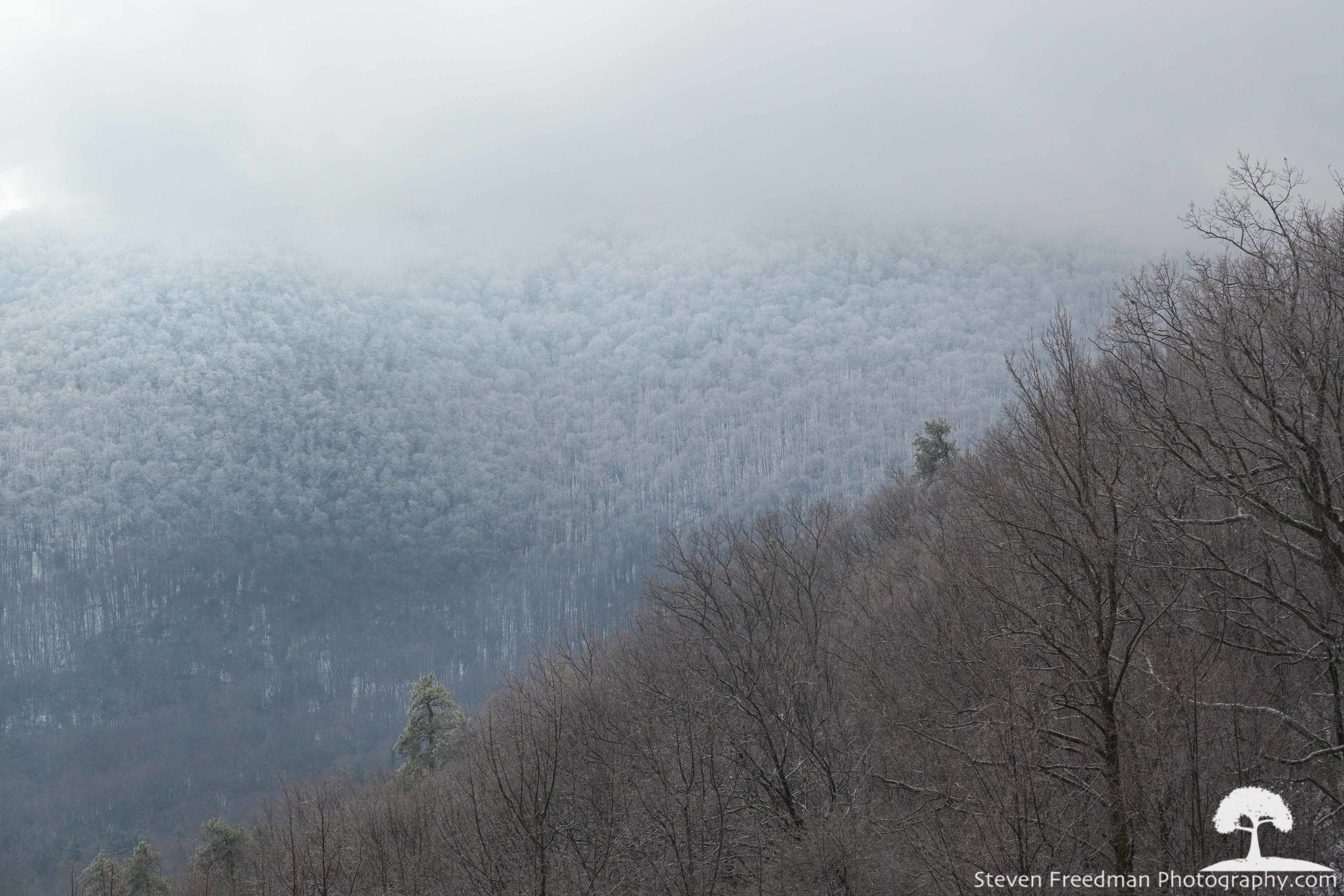Beautiful   Rime Ice   in the mountains.
