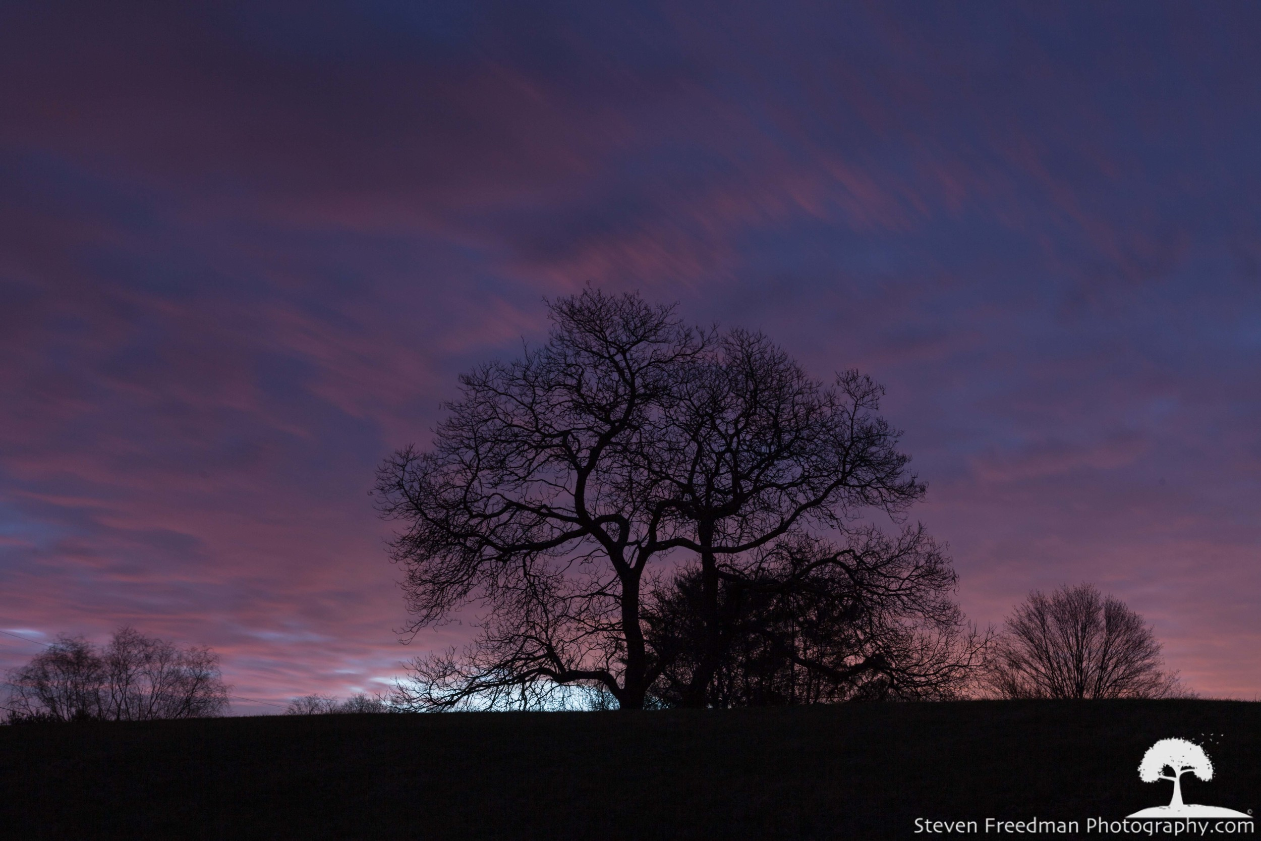 First Light at Noble Tree