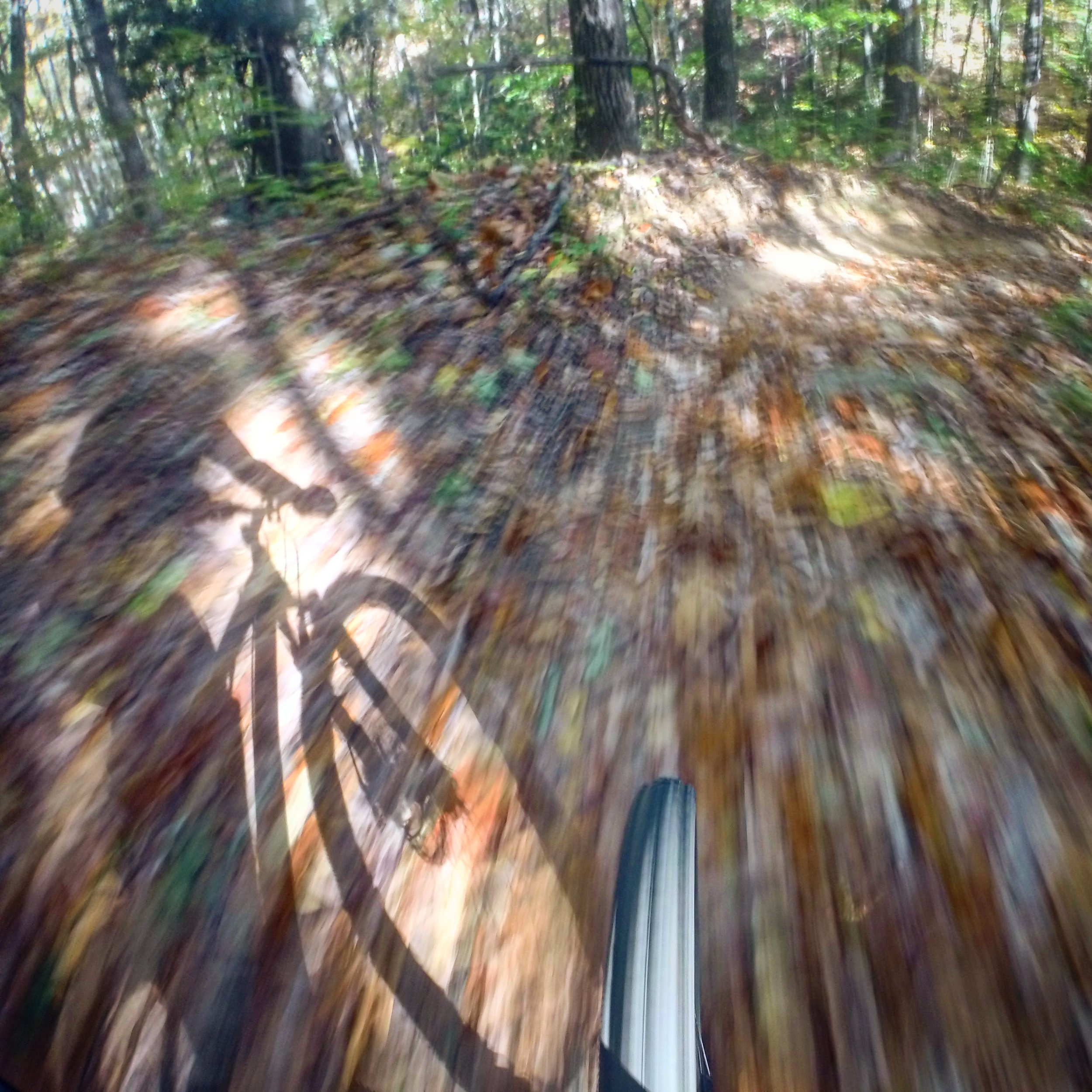 A motion shot captured with my Go Pro mounted on my handlebars.