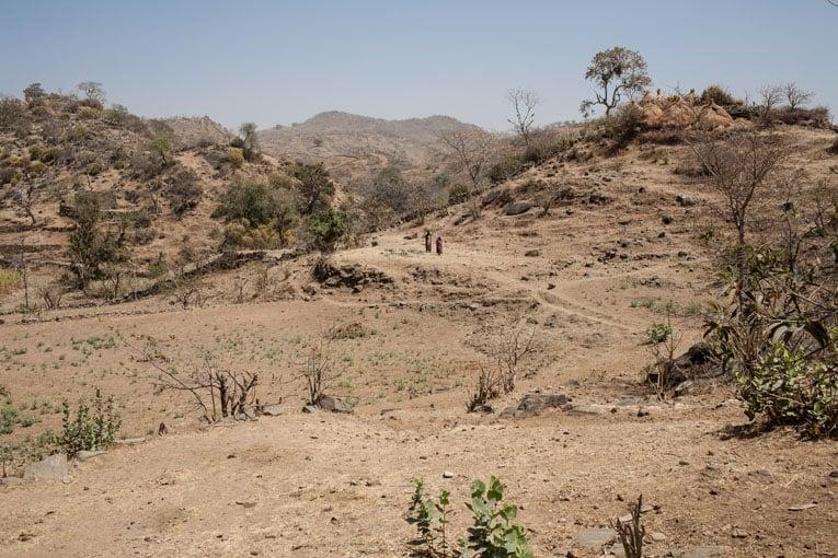 Cette région du Rajasthan est particulièrement arride