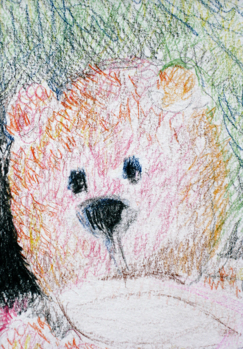 bear-studyincrayon.jpg