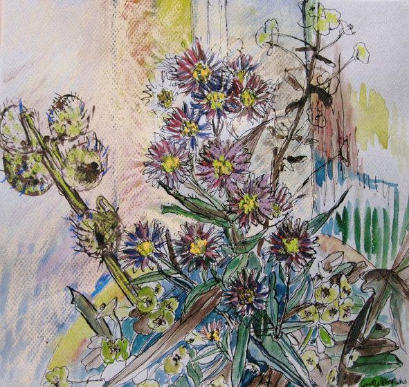 Michaelmas daisies in hove.jpg