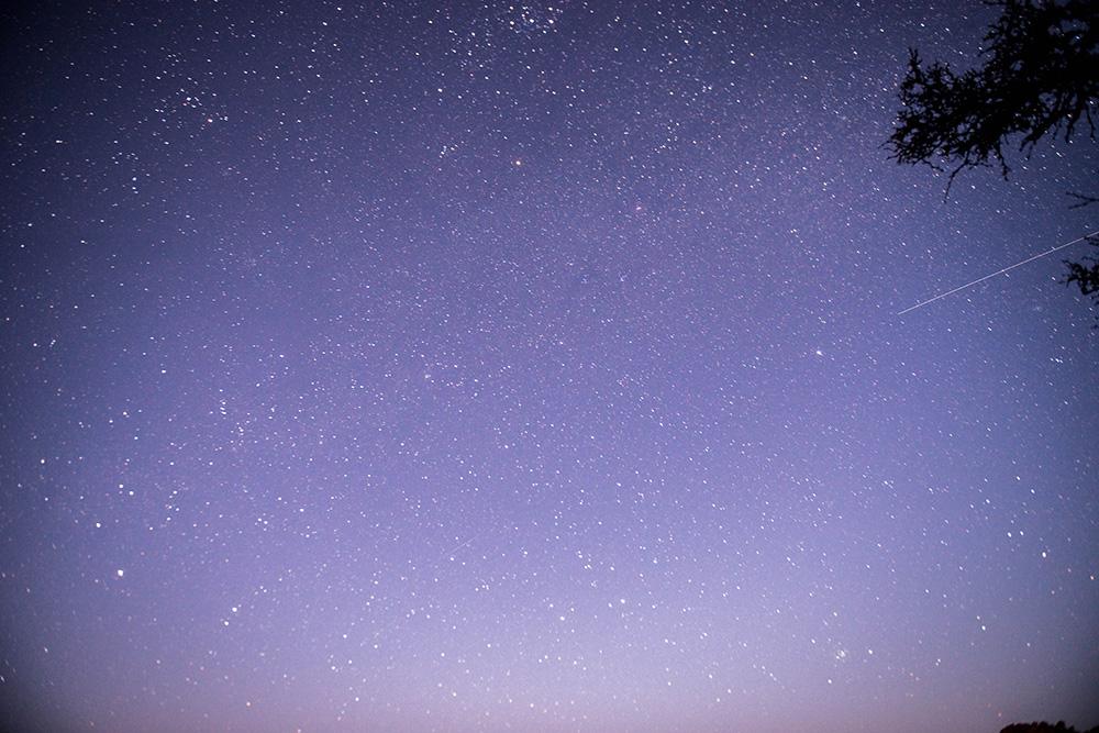 FVA_8466.jpg