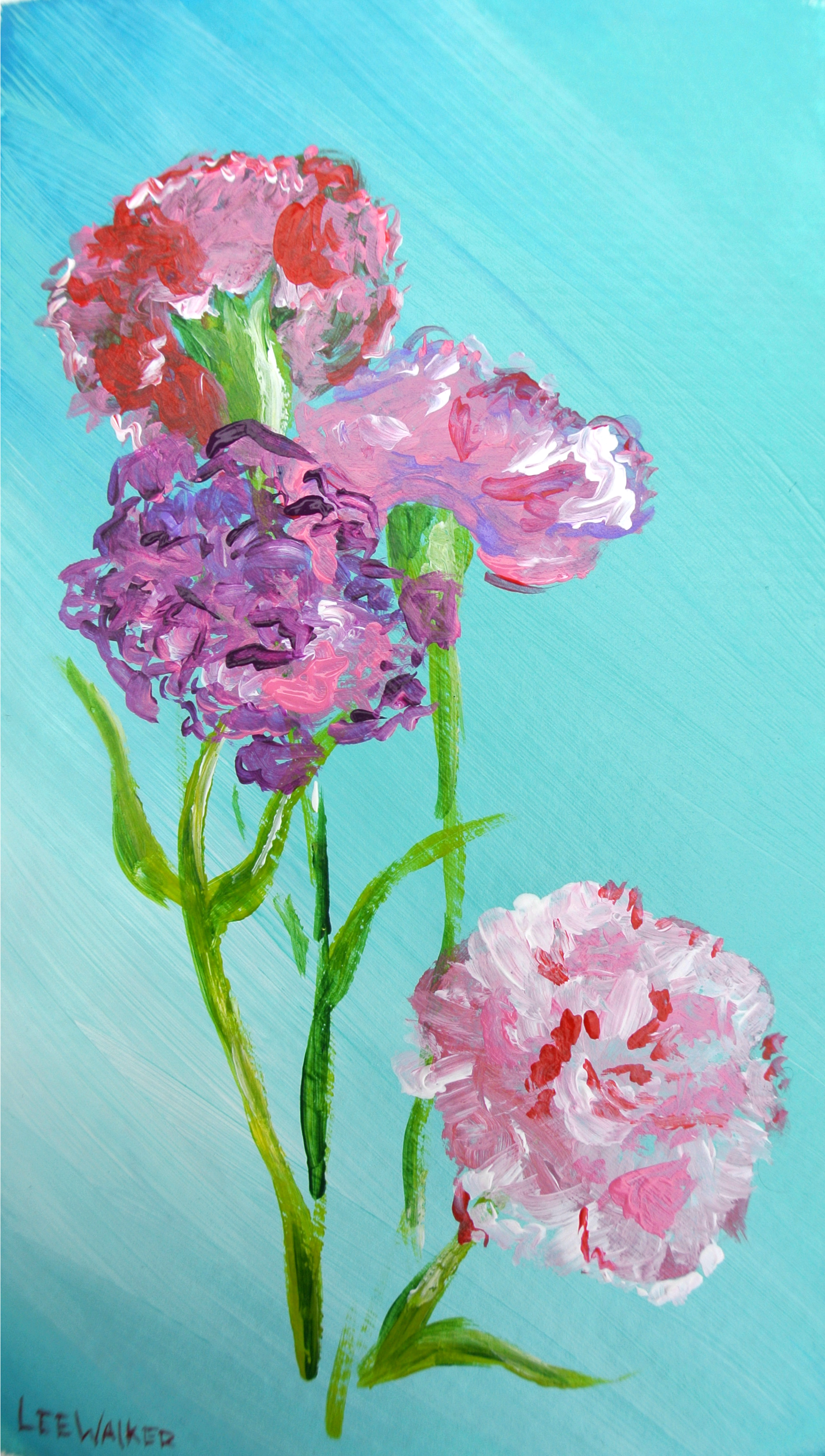 Carnations.png