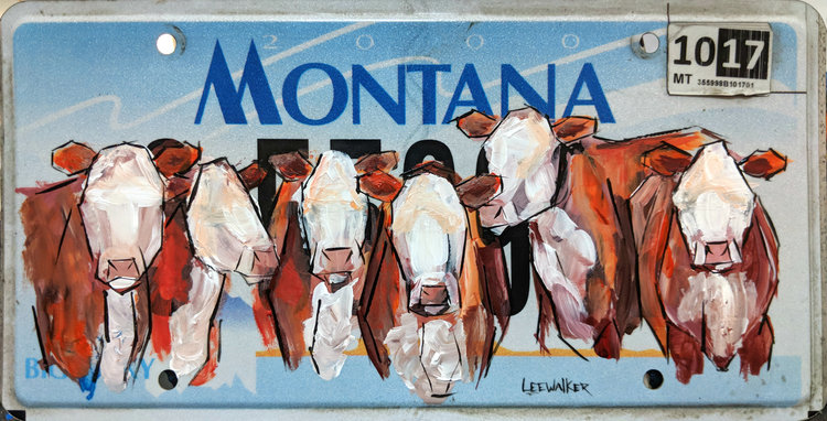"""Hereford Cattle"" available at Yellowstone Art Museum"