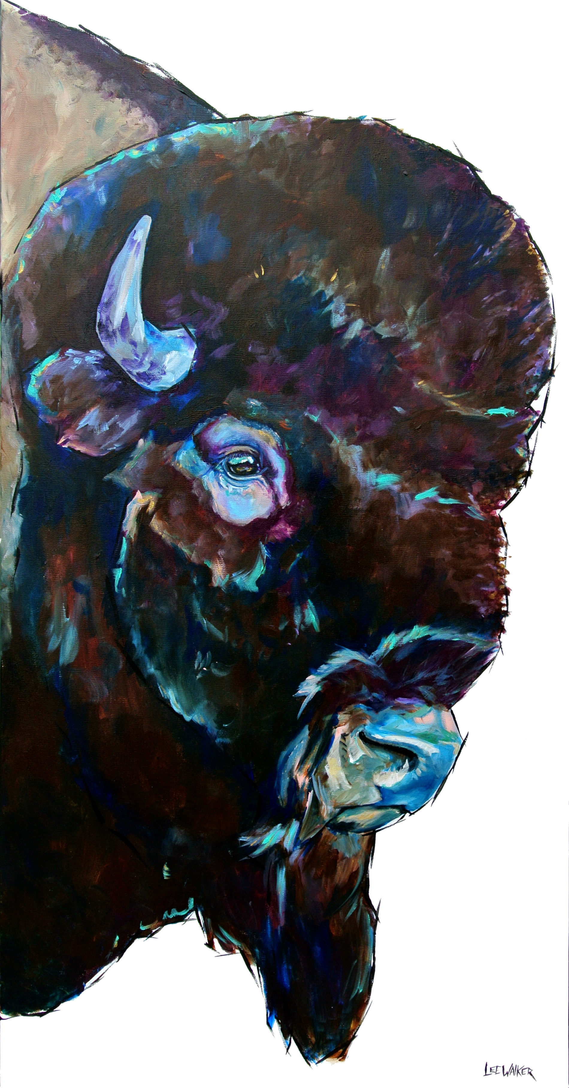 Bison Profile 24x48""