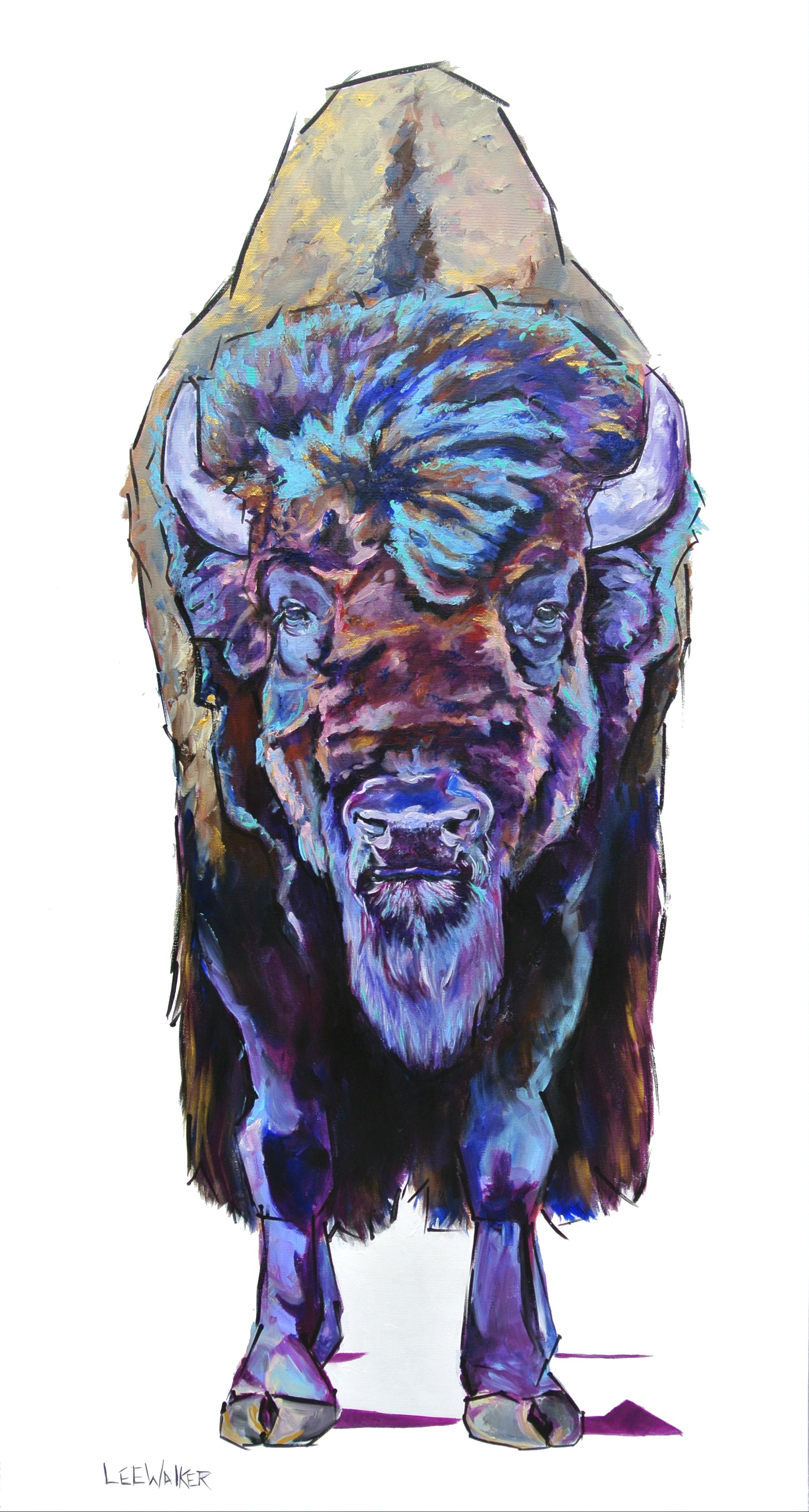 "Bull Bison 24x48"""
