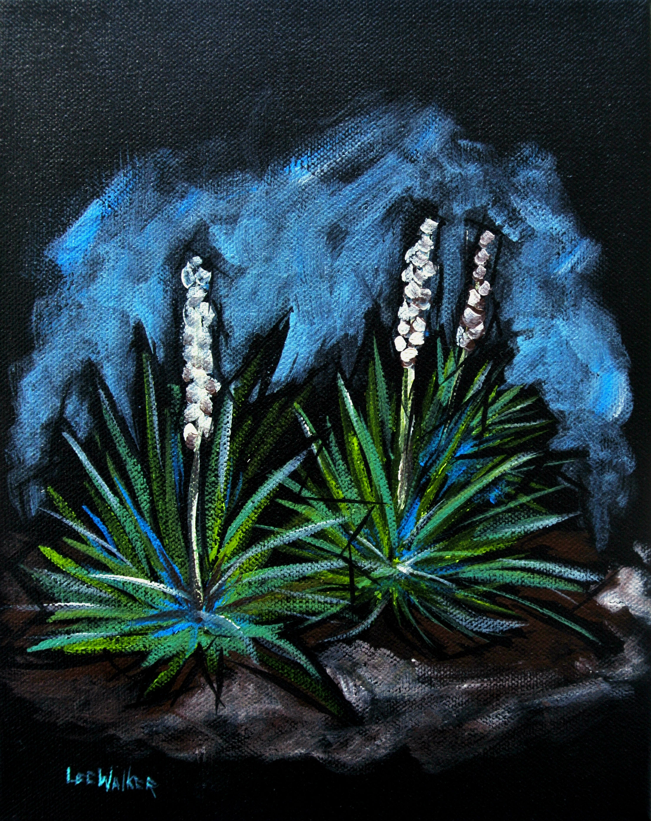 "Yucca Plant 8x10"""