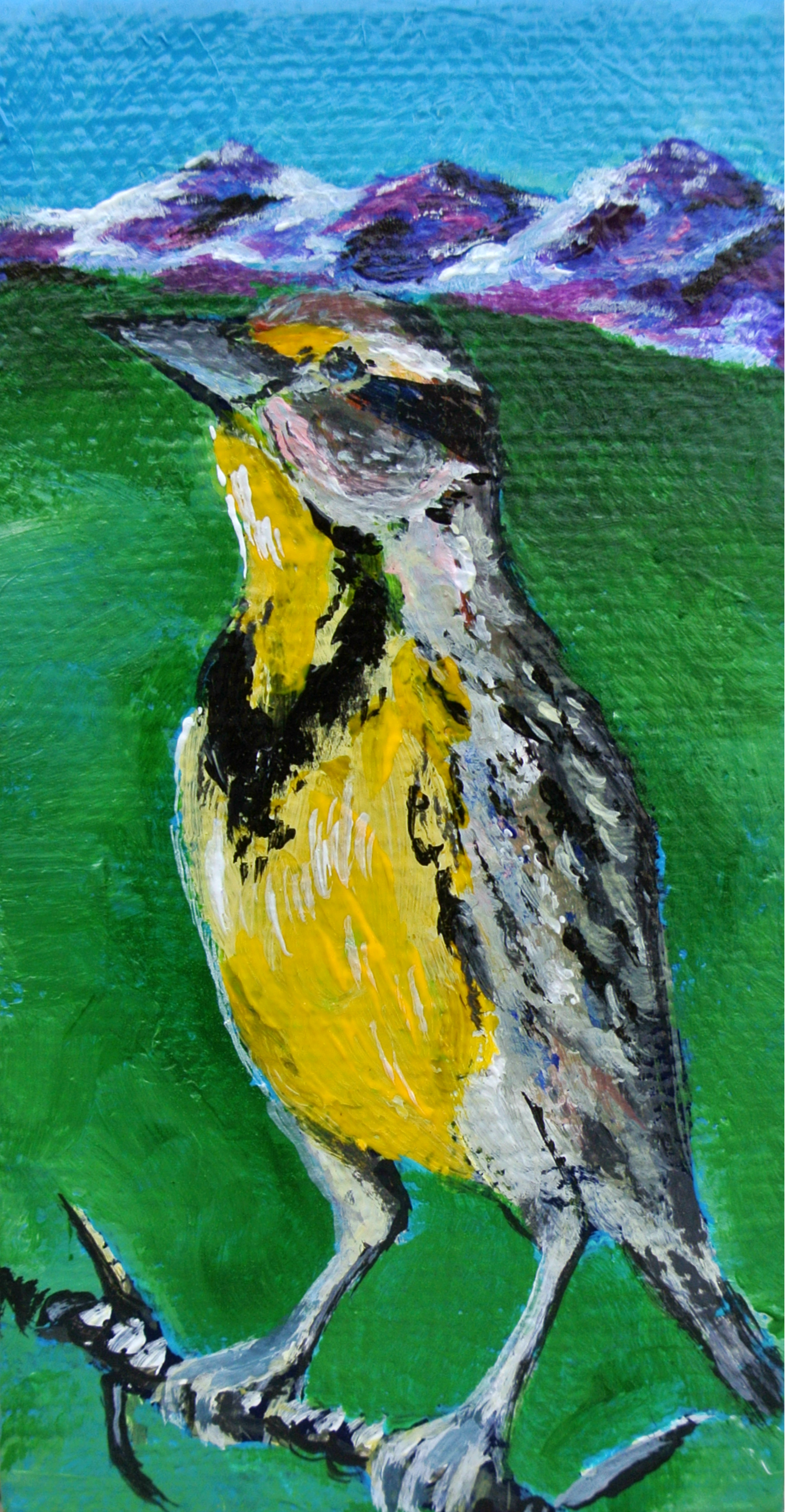 Mini Meadow Lark 4x2""