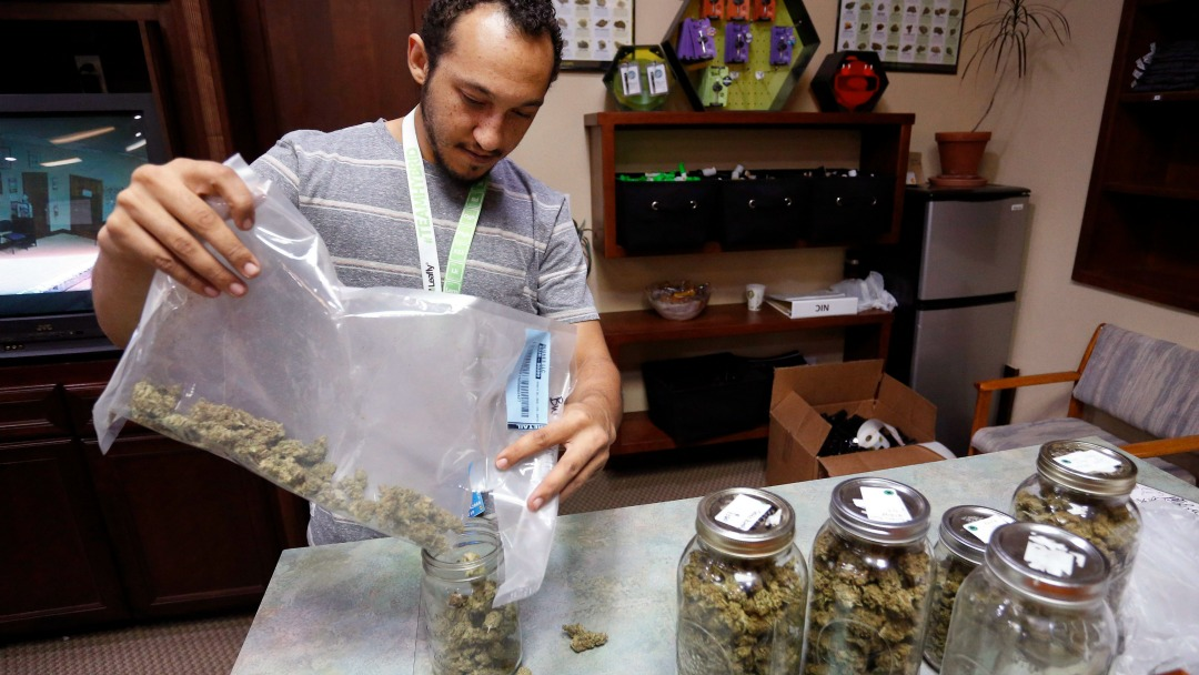 Miles Claybourne sorts strains of marijuana for sale at The Station, a cannabis shop in Colorado. (Brennan Linsley/AP)