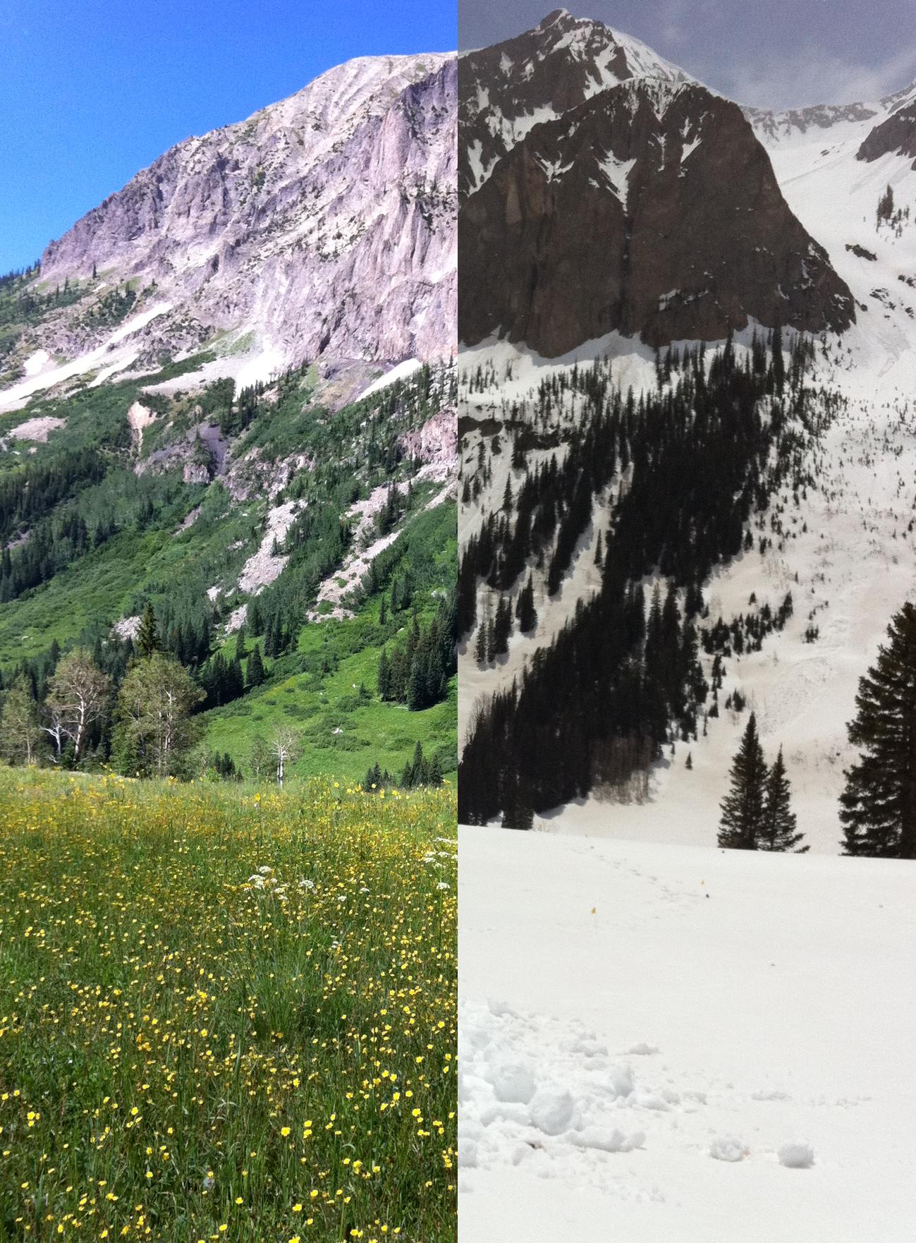 Gothic summer versus winter