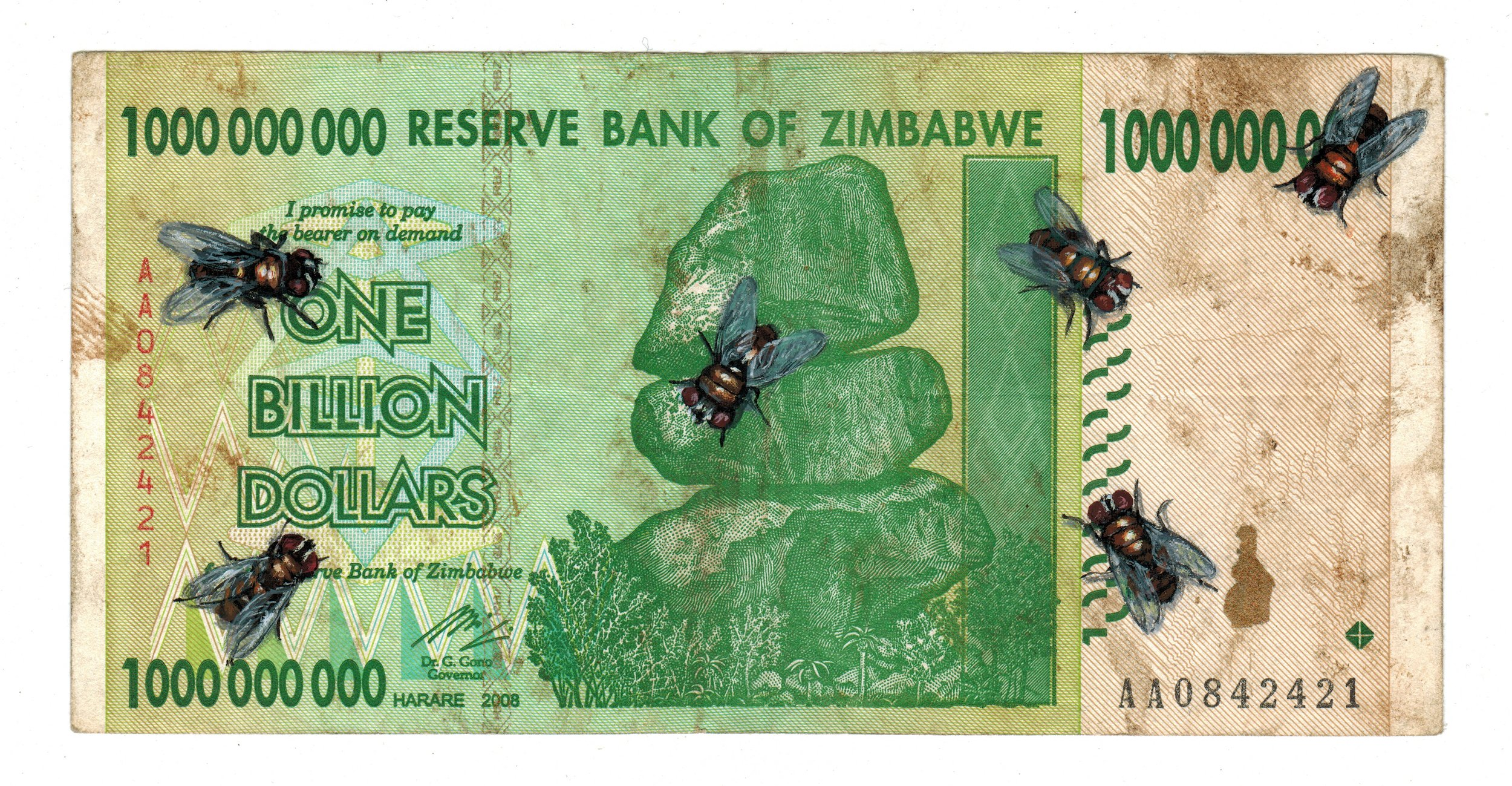Flies on cash.jpg