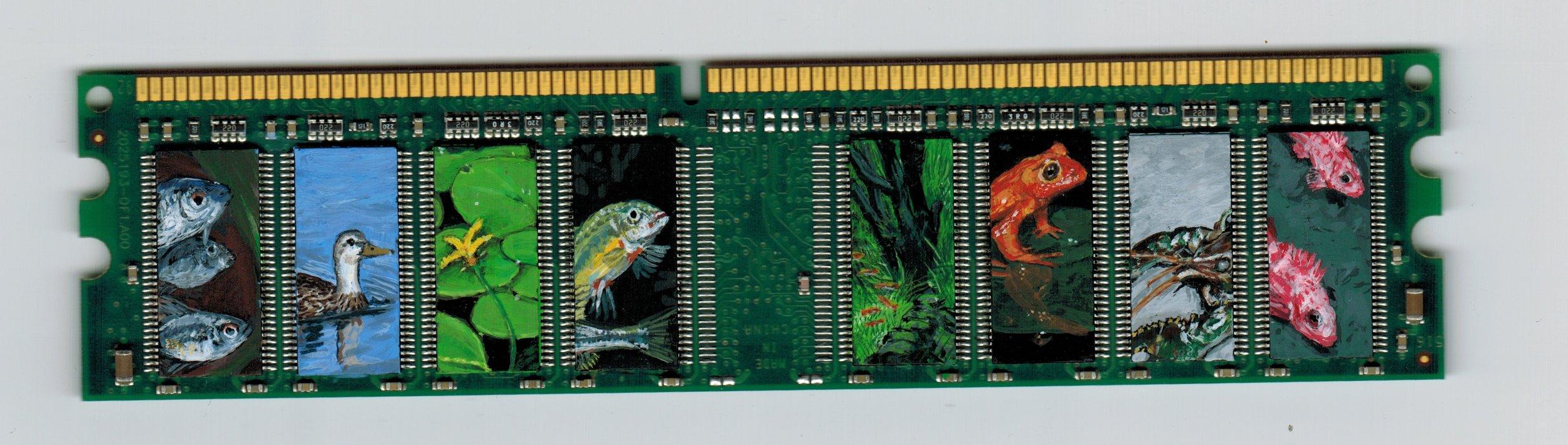 ecosystem-microchip.jpeg