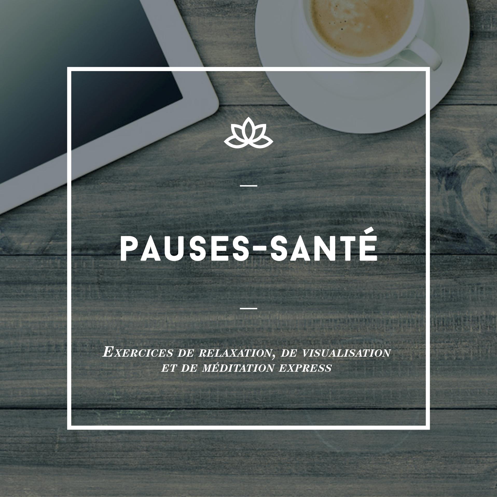 Apprivoiser_Pochette3_FINAL.png
