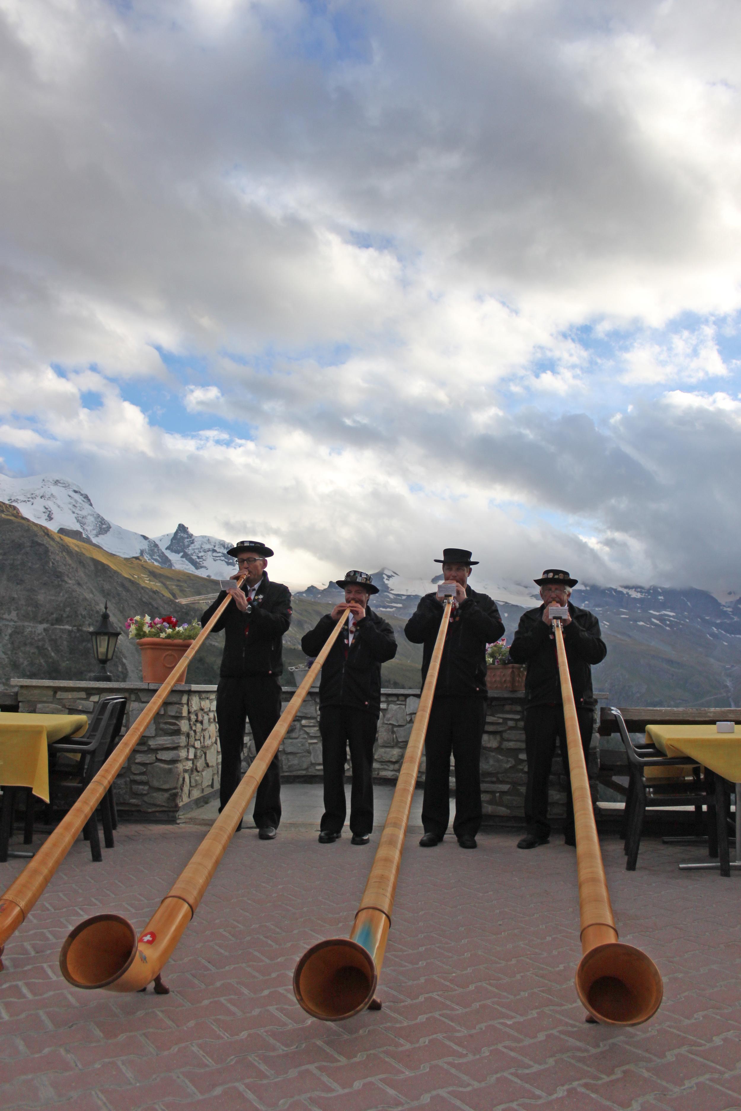 alpinehorn.jpg