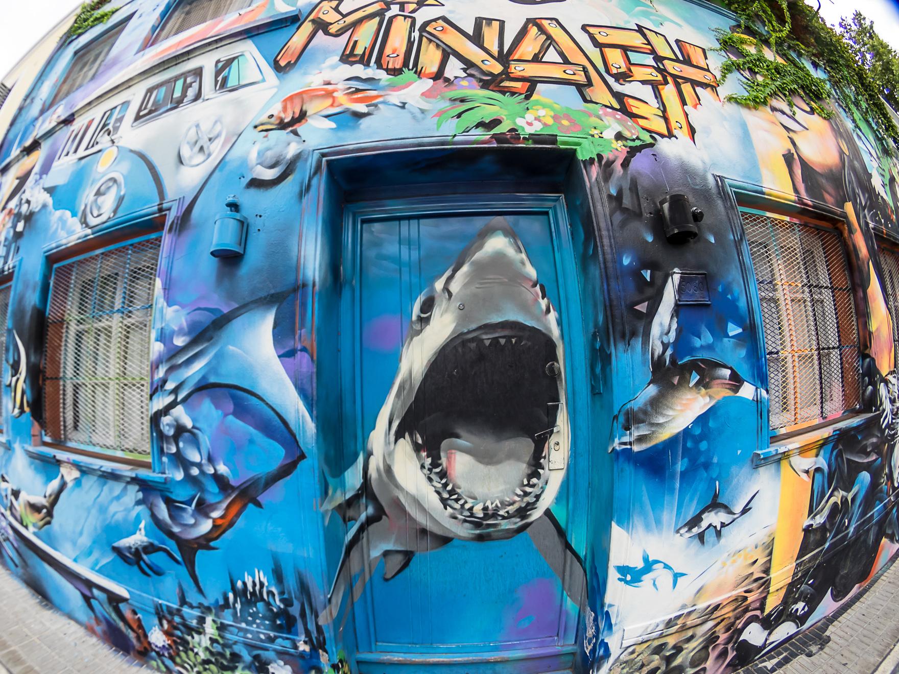 Buenos Aires Grafitti (3 of 10).jpg
