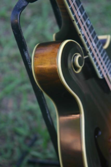 Lloyd Loar Mandolin 73994 sideview