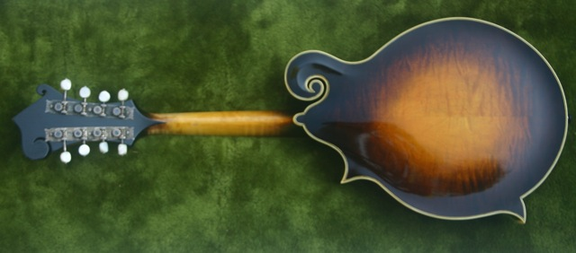 Lloyd Loar Mandolin 71633 back
