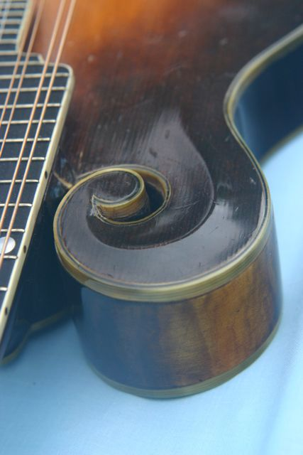 Lloyd Loar Mandolin 72060 curl