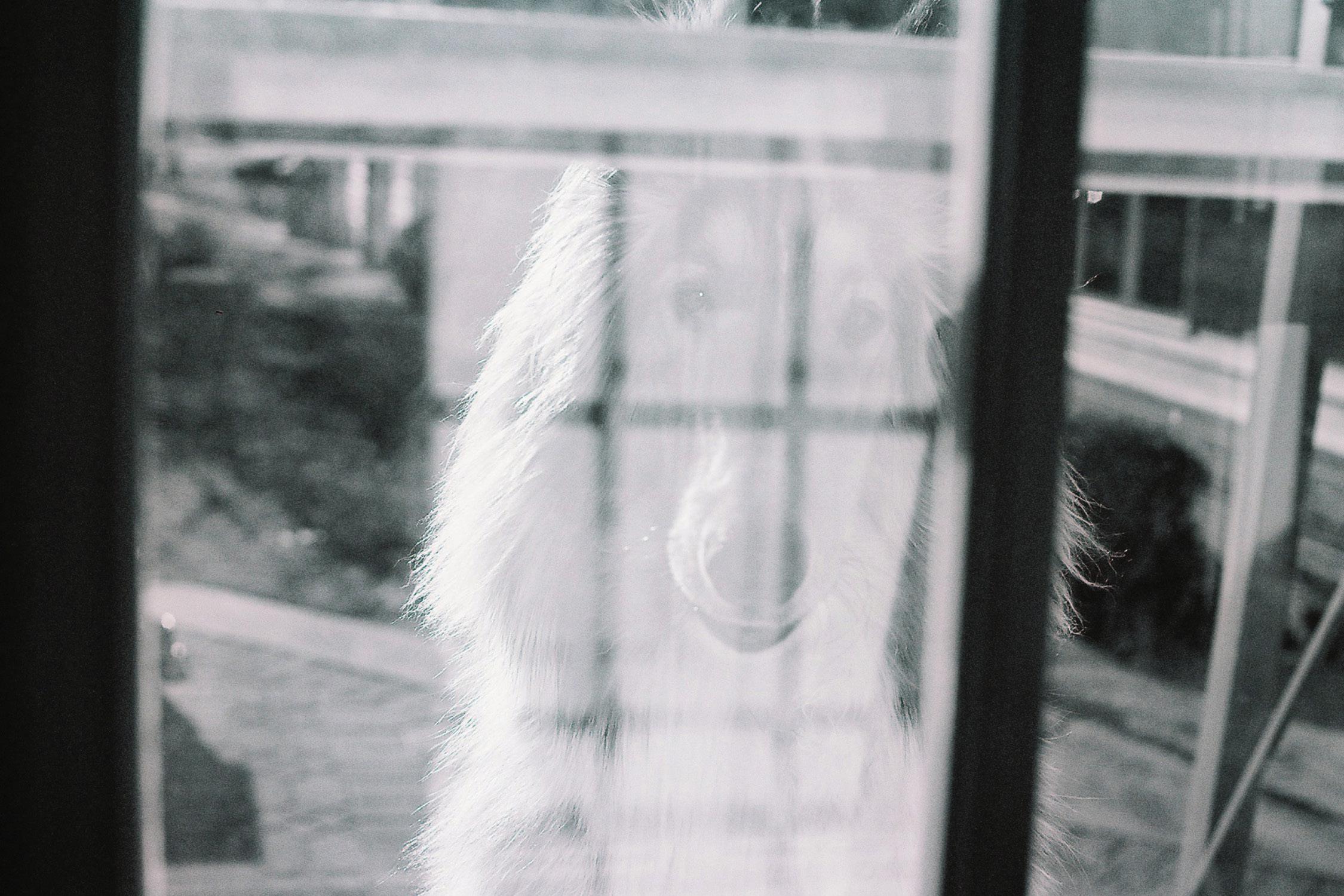 alex-laniosz-photography-32.jpg