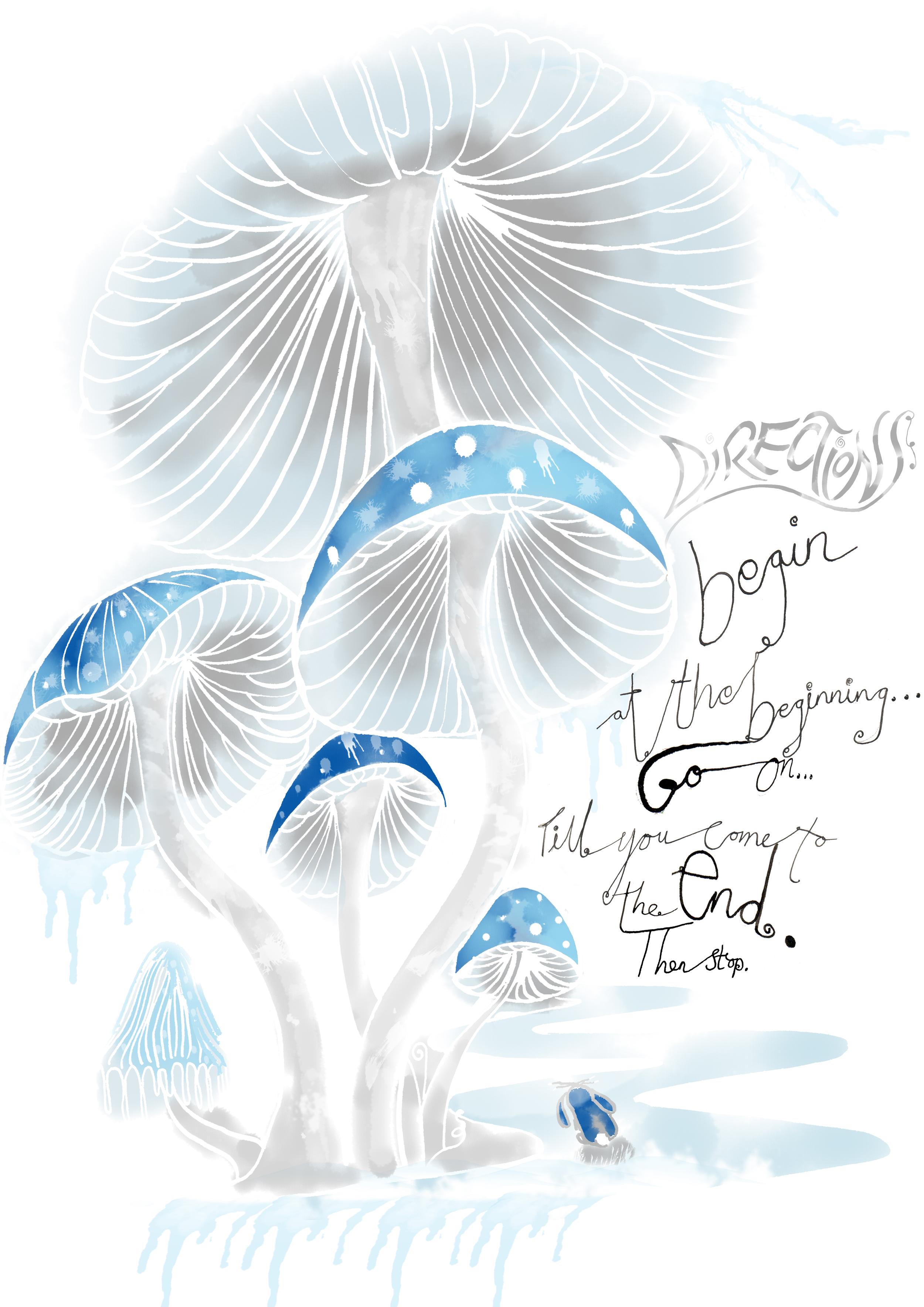 Alice_In_Wonderland_natalie_palmer_Sutton_illustration