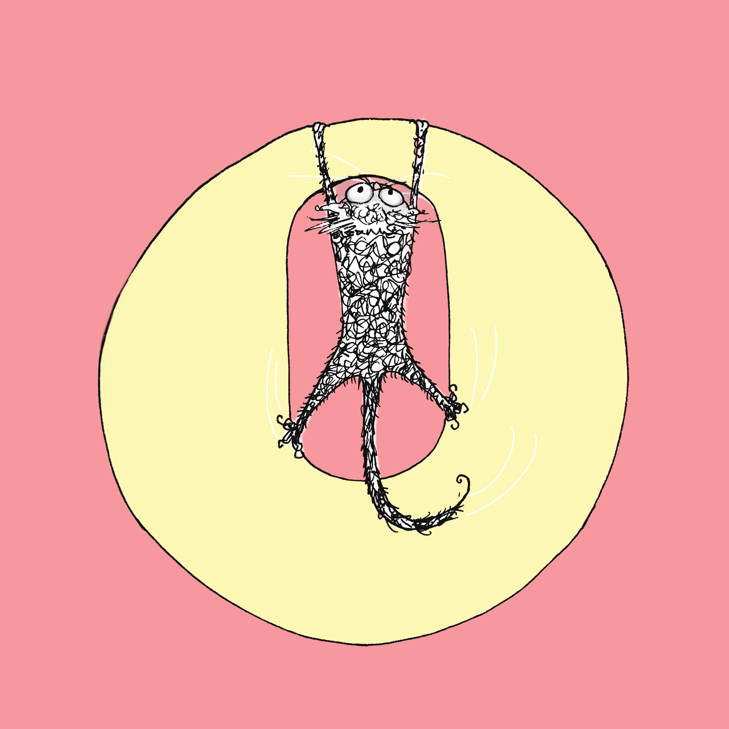 O - cat clinging on - cat drawings by natalie palmer sutton  - illustration and animation - Cat Don't Care