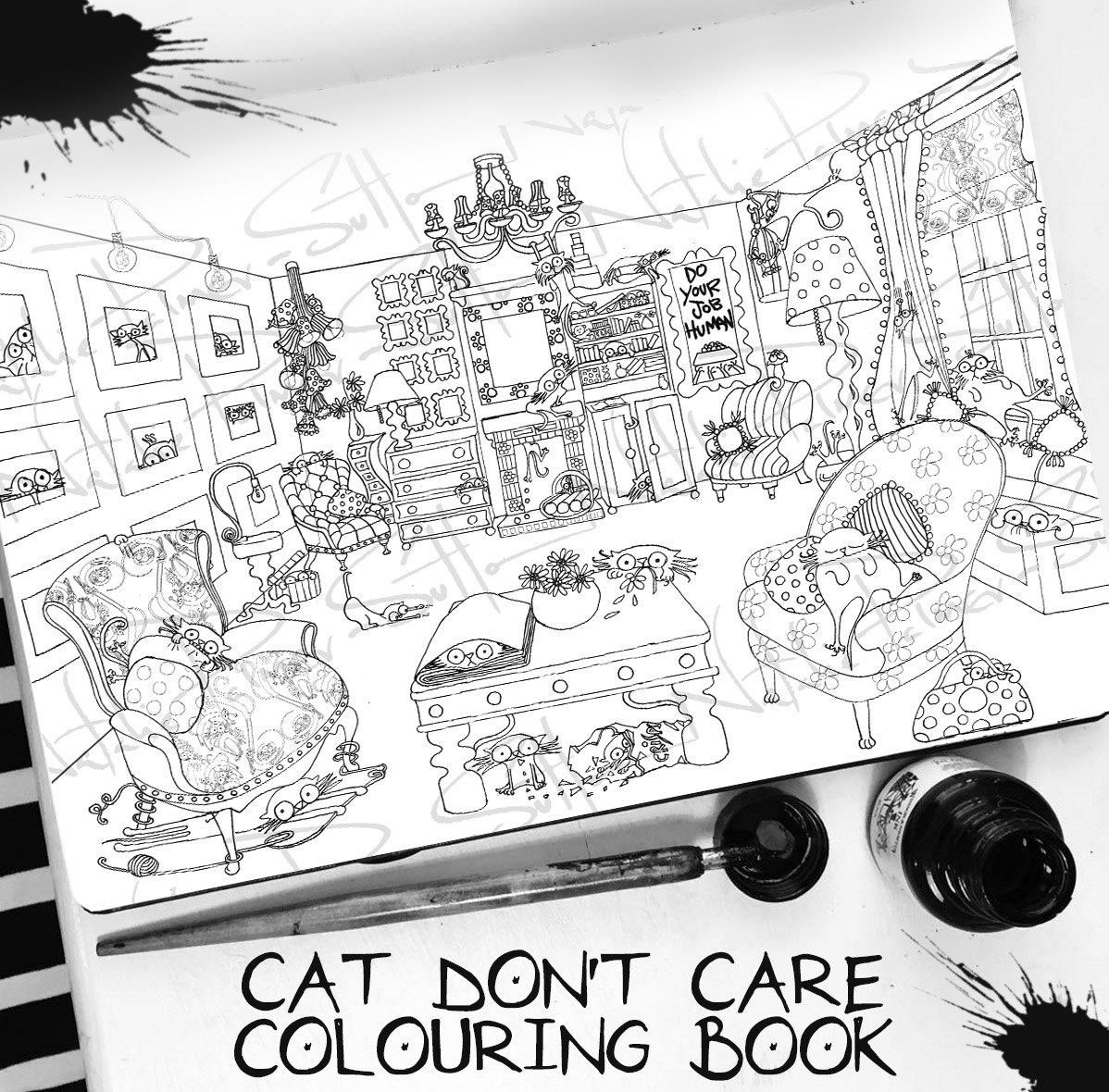 """CAT DON""""T CARE 