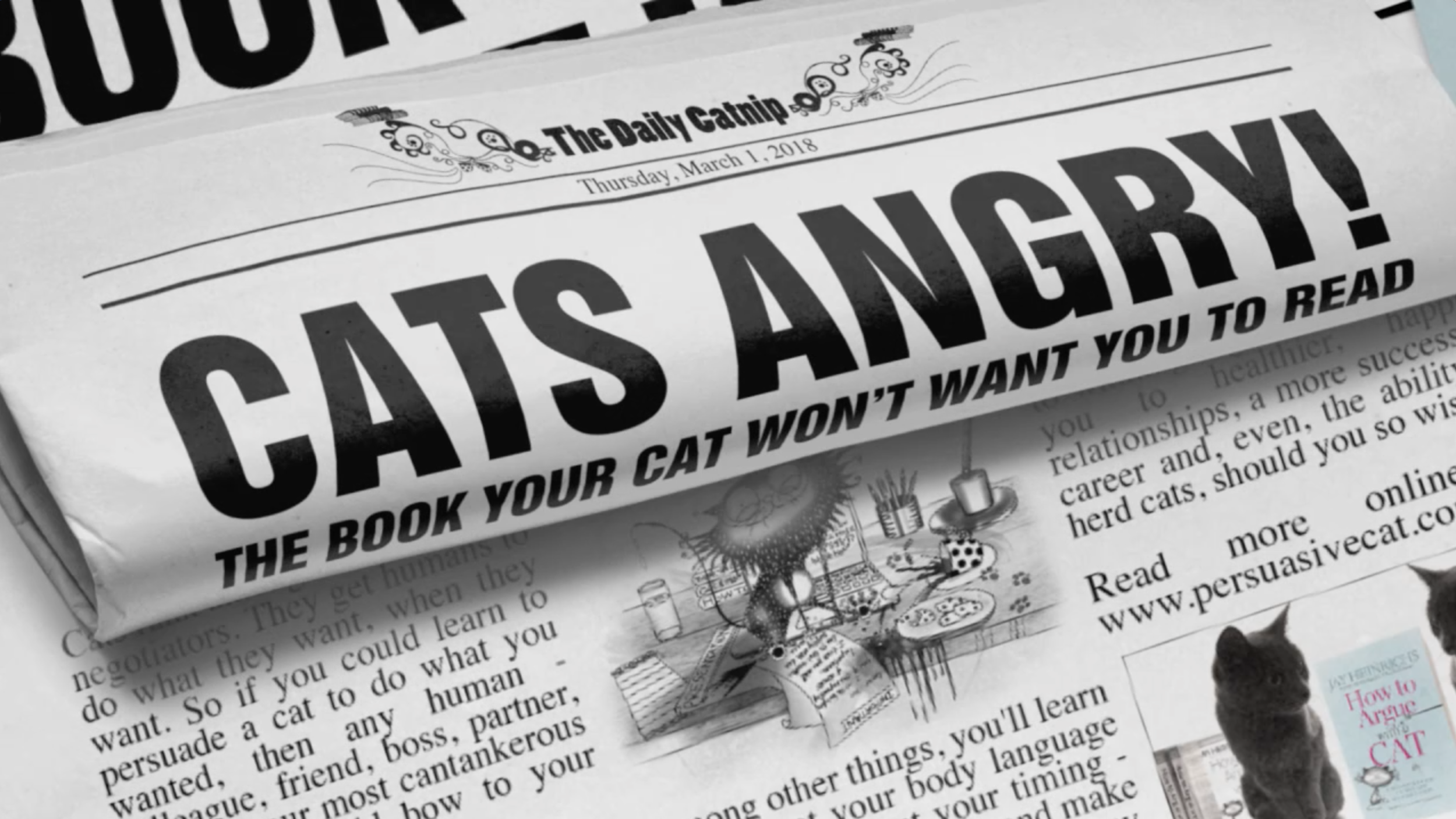 HOW TO ARGUE WITH A CAT | THE BOOK CATS WANT TO BAN | JAY HEINRICHS | NATALIE PALMER-SUTTON ANIMATION 12.png