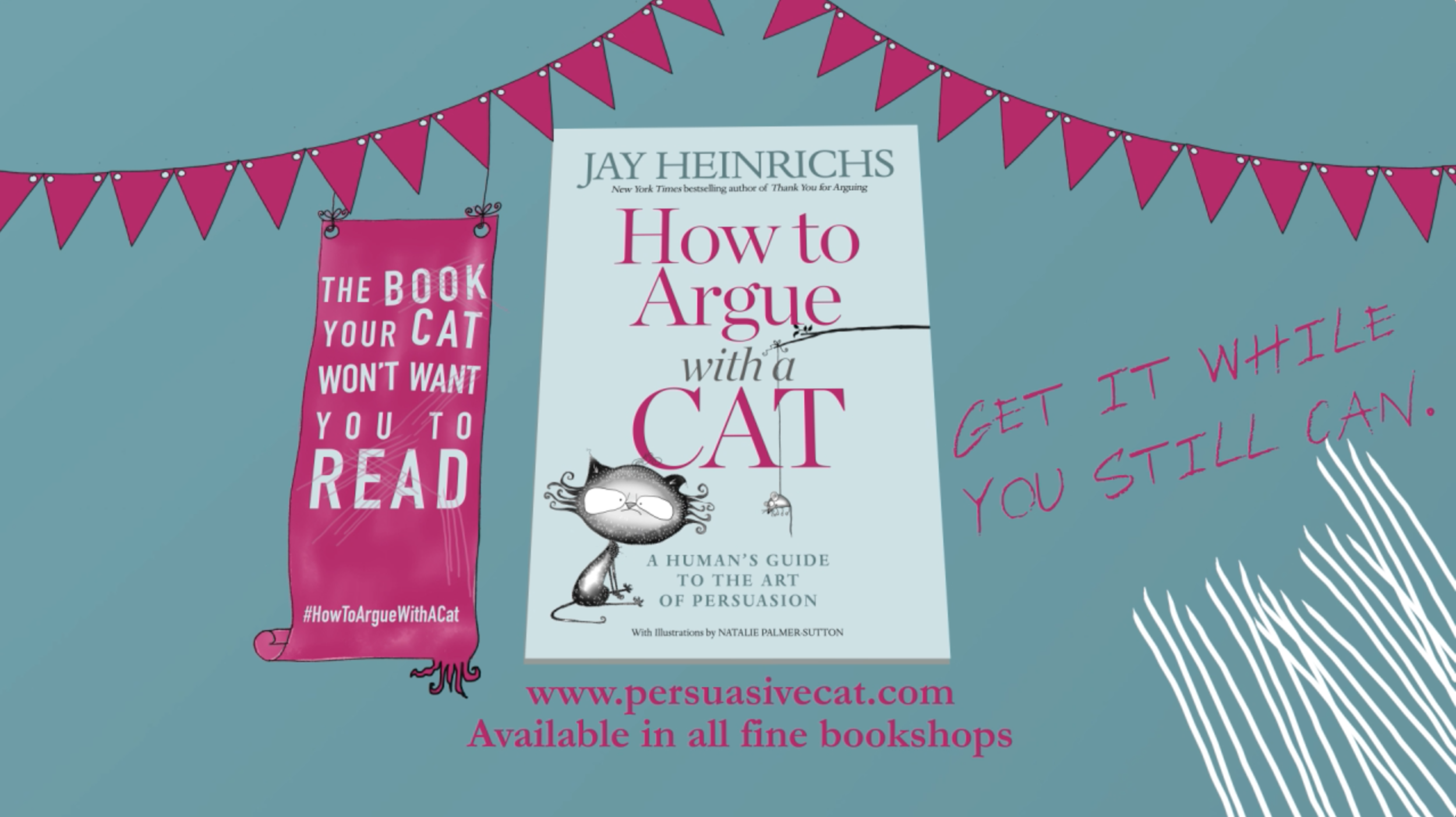 HOW TO ARGUE WITH A CAT | THE BOOK CATS WANT TO BAN | JAY HEINRICHS | NATALIE PALMER-SUTTON ANIMATION 47.png