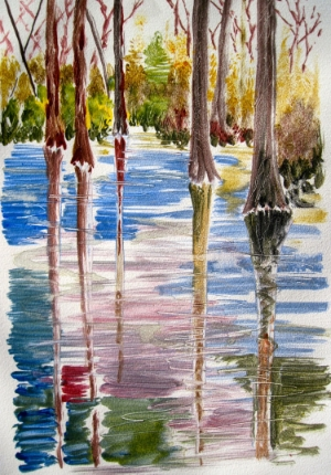 Hilton Head Swamp