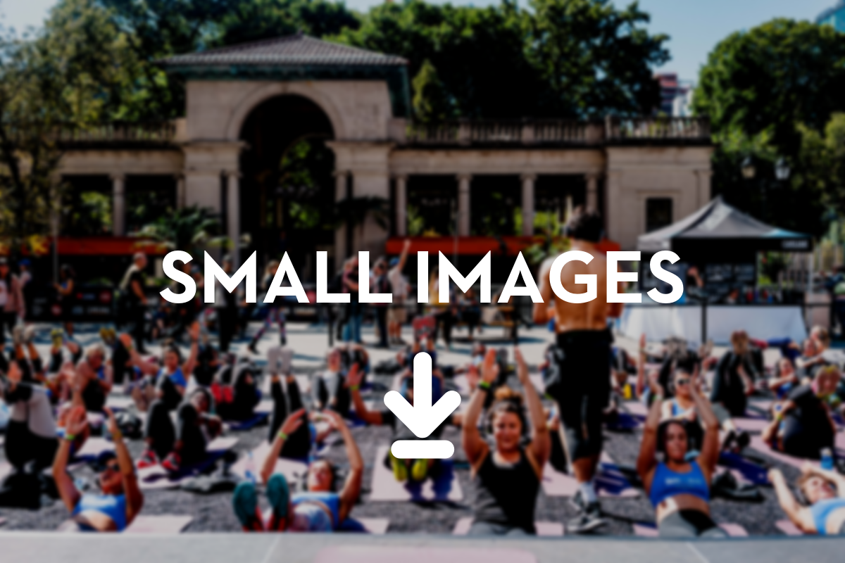 Download Small Images.png
