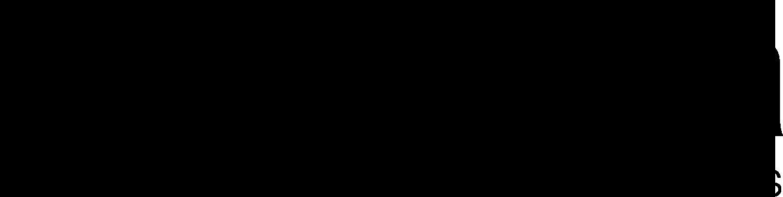 Prandina Logo Black.png