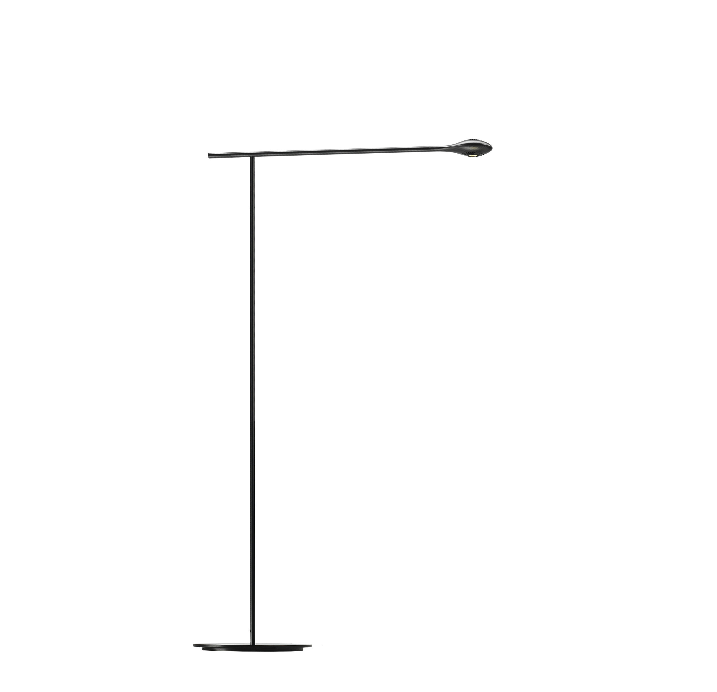 CarbonLight Floor Lamp.jpg