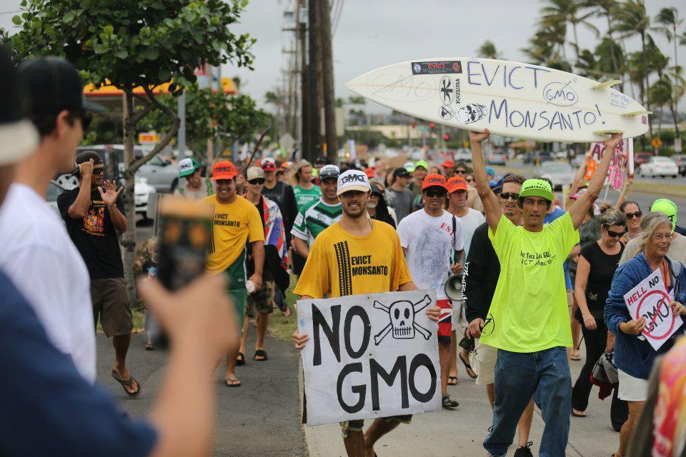 GMO Rally on Maui