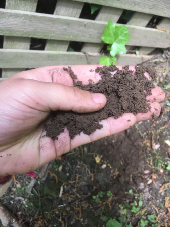 Here's what the soil looks like in College Park.