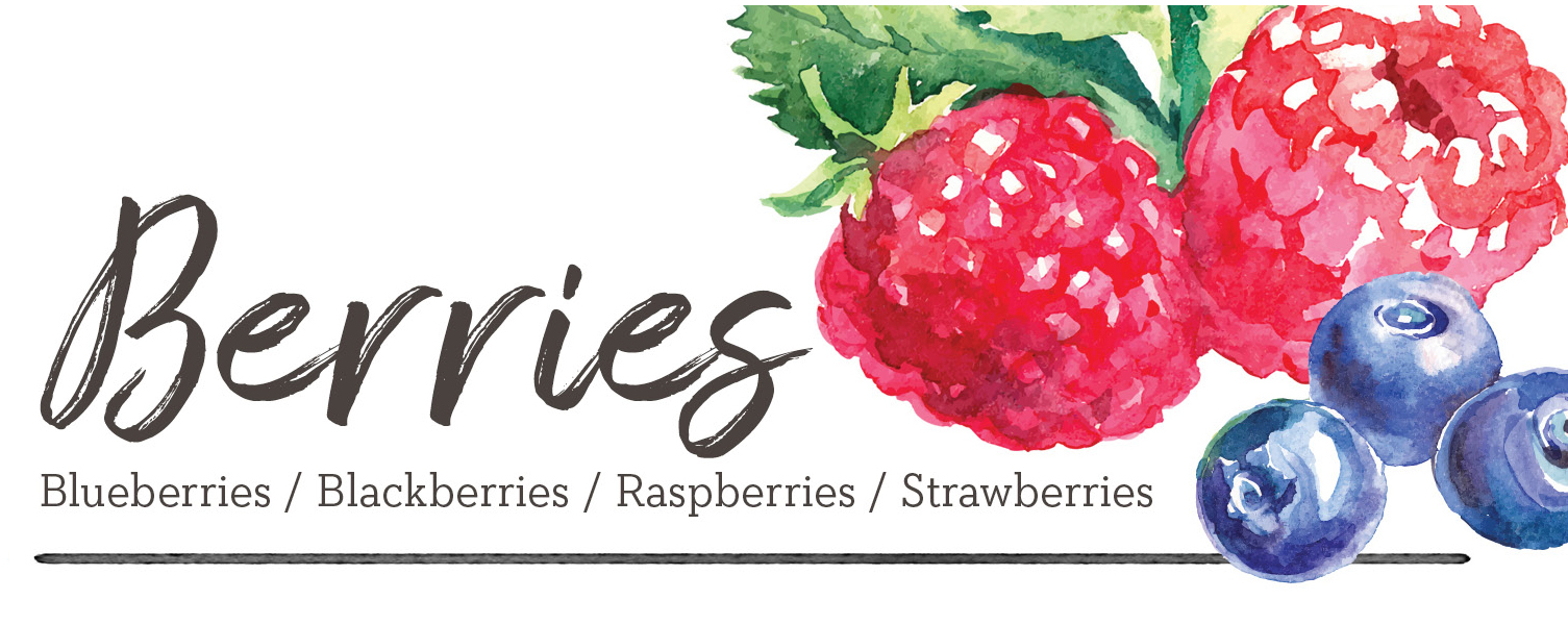 berriesheader2.jpg