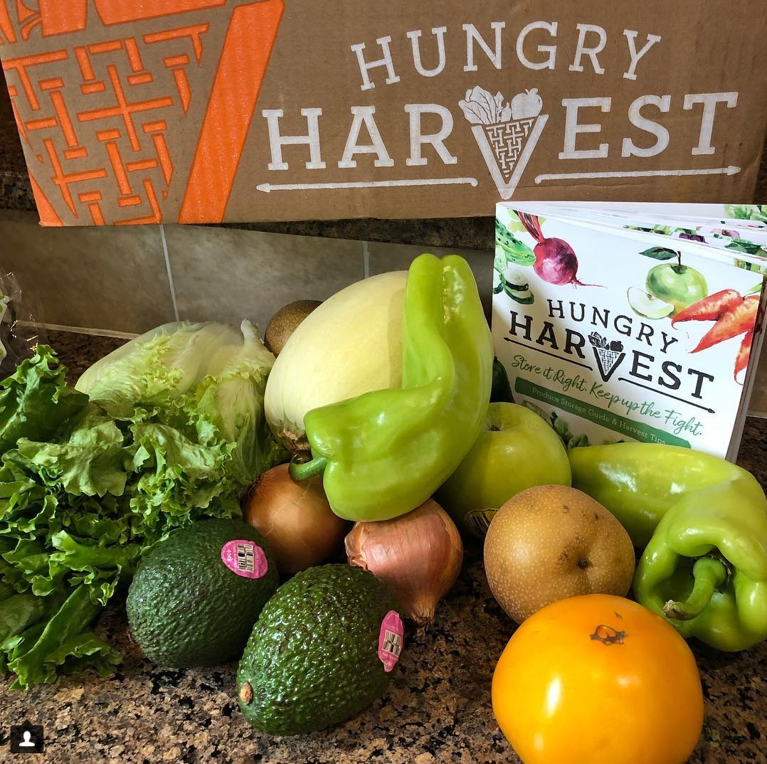 @tsp_basil  A Fresh Look at Fighting Food Waste  A First Harvest Review